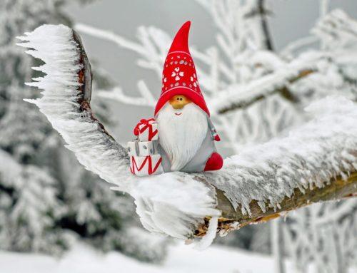 Mercatino di Natale dei Canopi | Pergine Valsugana