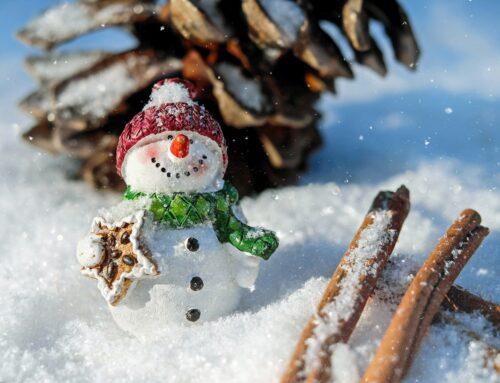 Mercatini di Natale di Trento 2020/21
