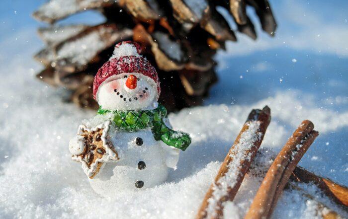 Mercatini di Natale di Trento 2020